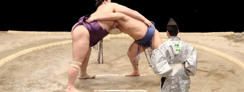 digital leaders are sumo fighters